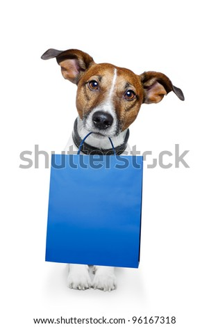dog with a shopping bag