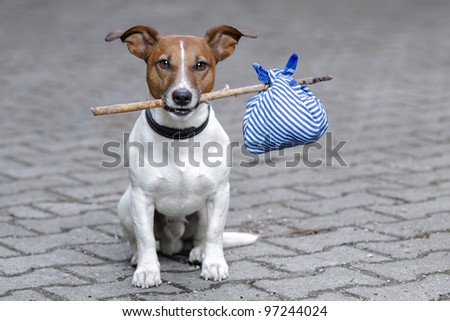 dog with a stick and a bag - stock photo
