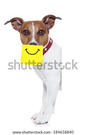dog with a yellow note sticking on nose with a big smile on it - stock photo