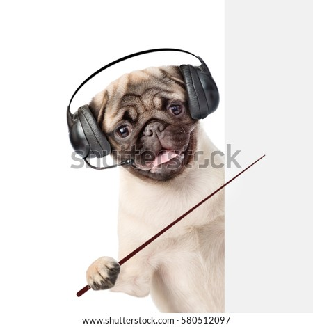 Dog with headset peeking behind white banner and holding pointing stick . Isolated on white background