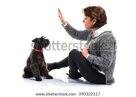 Dog with her owner