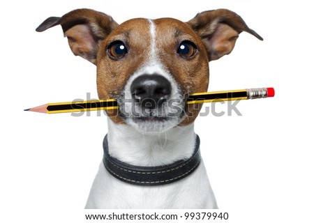 dog with pencil and eraser - stock photo