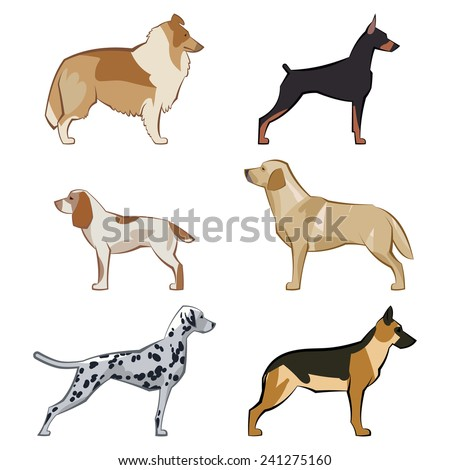 Dogs set of icons and illustrations - stock photo