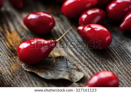 dogwood berries close-up on a wooden surface, soft focus