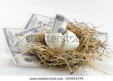 dollar bill banknote in nest egg - stock photo