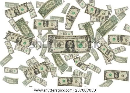 dollar bills on white background  - stock photo