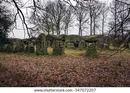 Dolmen D50, an ancient megalithic tomb in the Netherlands on a cloudy day in winter.