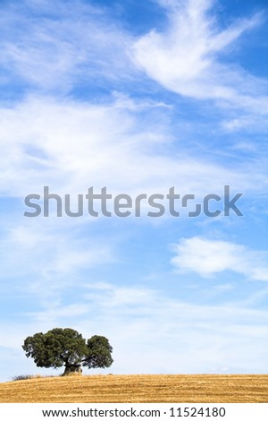Dolmen in a typical Mediterranean landscape from Alentejo (Portugal), very similar to Tuscany (Italy) - stock photo