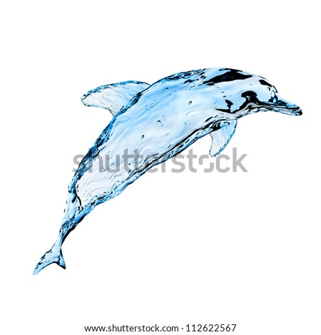Dolphin from splashes of water on a white background