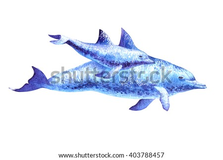 Dolphin - mommy and baby. Watercolor illustration isolated on white background