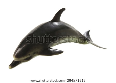 Dolphin on White Background - stock photo