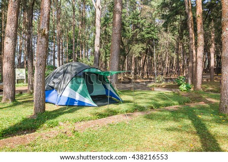 Dome tents camping of tourist in forest camping site