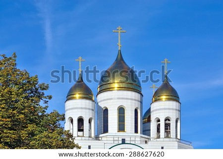 Domes of Cathedral of Christ the Saviour. Kaliningrad (formerly Koenigsberg), Russia