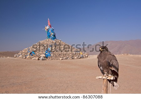 domestic Eagle close to an Mongolian stony ovoo