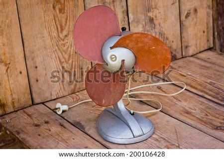 domestic fan - stock photo