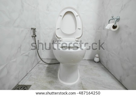 Domestic restroom with white lavatory