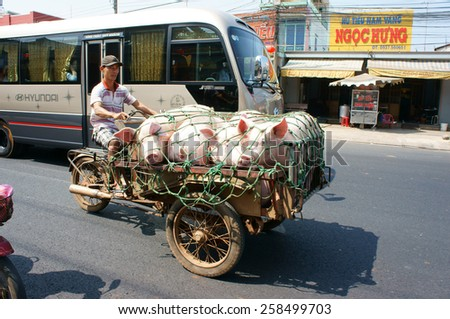 DONG NAI, VIET NAM- FEB 13: Asian man transport group of pig to market by tricycle on street, pig is popular product from family agriculture, Dongnai, Vietnam, Feb 13, 2015