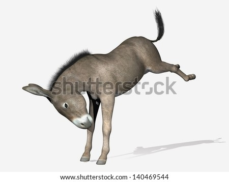 Donkey standing on its front legs, head down, rearing, in white background - stock photo