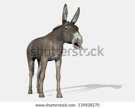 Donkey standing with its mouth open and tongue outside in white background - stock photo