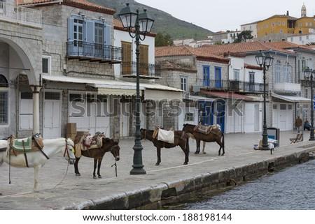 donkeys at the Greek island of Hydra - stock photo