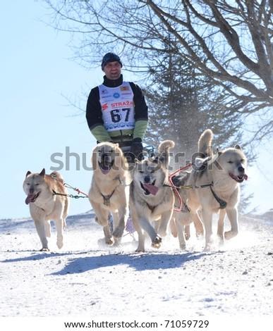 DONOVALY, SLOVAKIA - FEBRUARY 12: Kerul Jan of Slovakia participates in the 10th World Championship F.I.S.T.C. February 12, 2011 in Donovaly, Slovakia. - stock photo