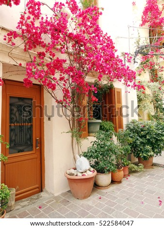 door architecture detail in house building with bougainvillaea Greece