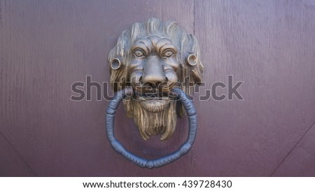 Door handle lion