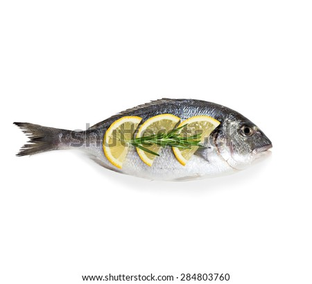 Dorado fish isolated on white background. - stock photo