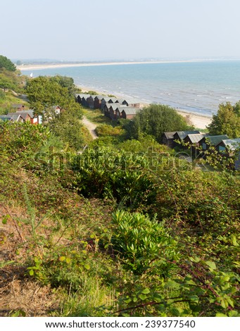 Dorset Studland coast located between Swanage and Poole and Bournemouth  England UK   - stock photo