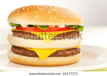 Double cheese burger on the white plate - stock photo