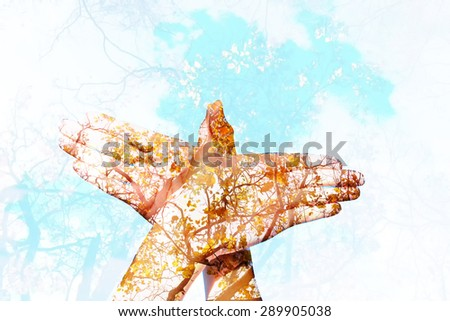 Double exposure hand sign of dove and forest backgrounds - stock photo