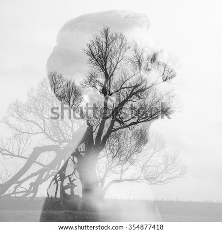 Double exposure, young man, and broken tree - stock photo