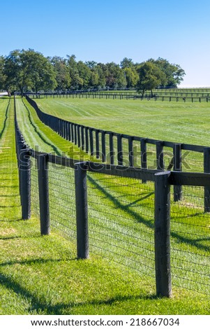 Double fence at horse farm. Country summer landscape. - stock photo