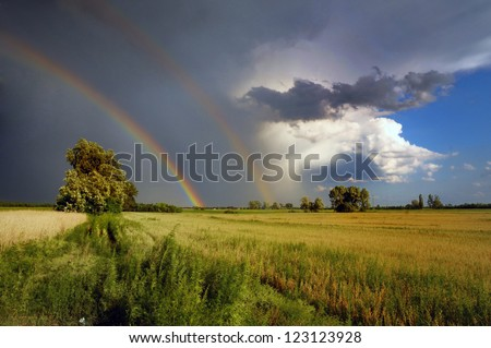 double rainbow in the stormy dark skyand a lone tree in nature and a lone tree in nature - stock photo