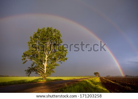 Double rainbow over field road - stock photo
