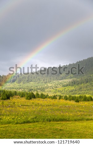 Double rainbow over medow and forest - stock photo