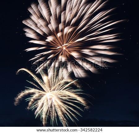 Double Silver Green Firework - stock photo