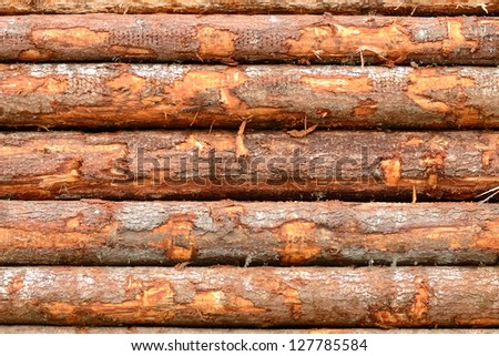 Douglas fir logs destined for the mill on railroad cars in Oregon - stock photo