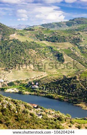 Douro Valley, Portugal - stock photo