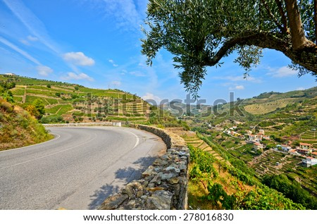 Douro Valley: Road next to vineyards and small village near Peso da Regua, Portugal  - stock photo