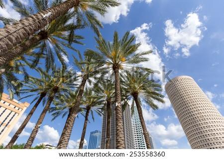 Downtown Tampa, Florida daytime - stock photo