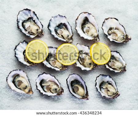 Dozen fresh oysters on a sea salt with lemon. Top view - stock photo