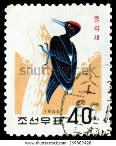 DPRK - CIRCA 1966: a stamp printed in DPRK,  shows   Bird  Black Woodpecker, circa 1966 - stock photo