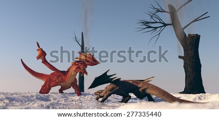 dragon confrontation - stock photo