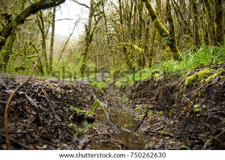 Drainage Stock Images Royalty Free Images Amp Vectors