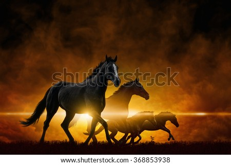 Dramatic apocalyptic background - four running black horses, red glowing clouds - stock photo