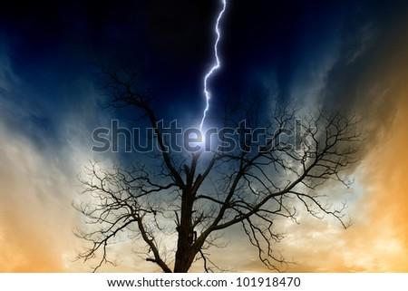 Dramatic background - tree struck by lightning from dark sky - stock photo