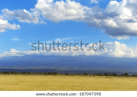 Dramatic cloud and the vast grassland of savanna - stock photo