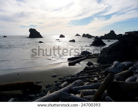 Dramatic clouds at sunset over a rocky beach covered with driftwood - stock photo