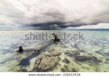 Dramatic cloudscape with heavy rain at the horizon over coral spotted transparent sea and big tree trunk underwater. Wide angle shot in Tanjun Karang, Central Sulawesi, Indonesia. - stock photo